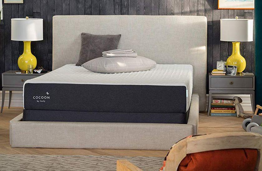 Cocoon by Sealy Chill Soft Foam Mattress